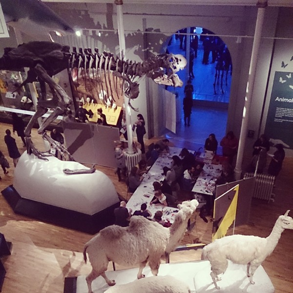 Night of The Mammoth Photos @NtlMuseumsScot @KateMclelland