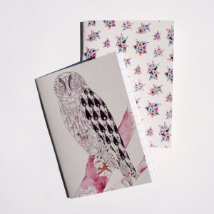 2-mini-notebooks-lined-owl