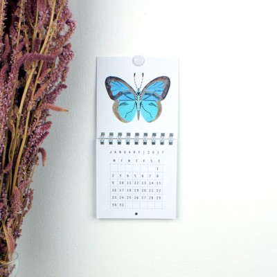 2017 Mini Wall Calendar Insects