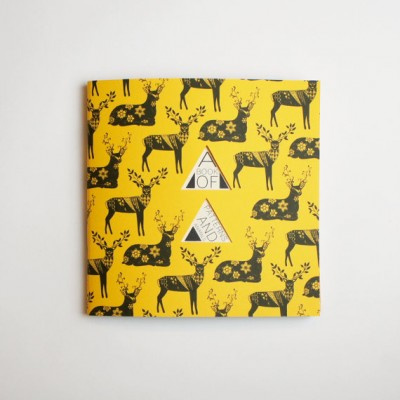 A Book of Patterns and Animals