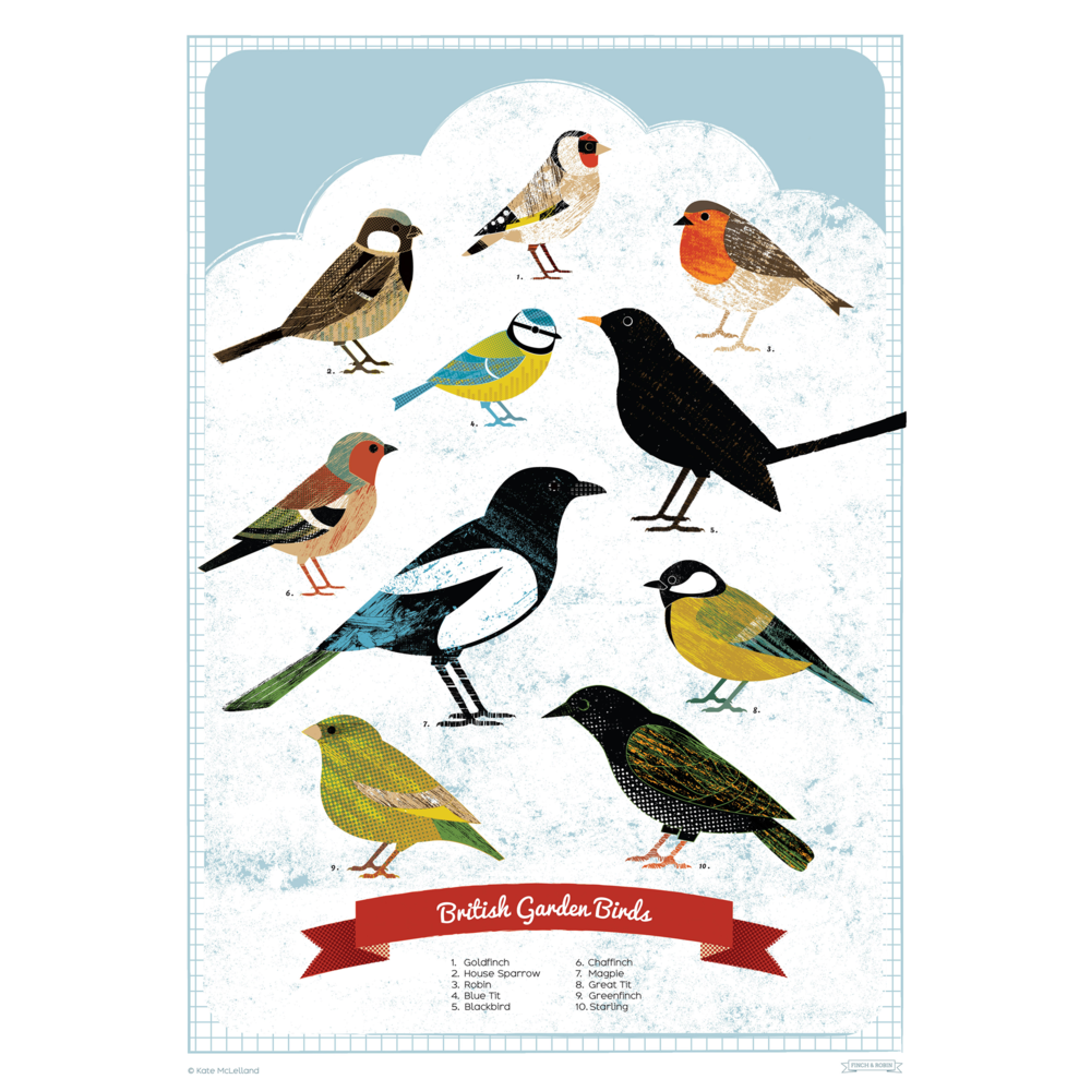 British Garden Birds Poster Gifts Under 10 Posters