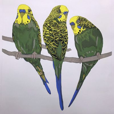 Budgerigars Screen Print by Susie Wright