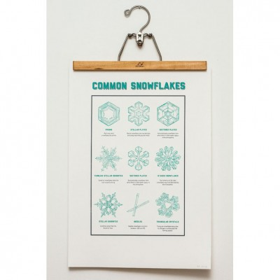 Common-Snowflakes-sq
