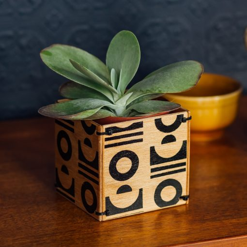 diy plant pot by ding ding
