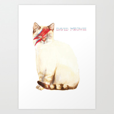 david meowie, david bowie, cats, animals, music, major tom