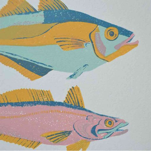 scottish fish, fish, native, scotland, pastel, screen print, east end press