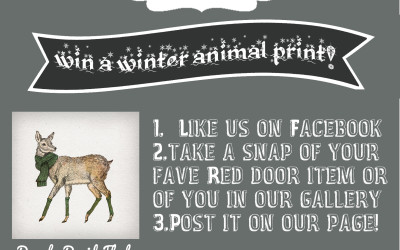 Win a David Fleck Winter Animal Print in the Great The Red Door Gallery Facebook Competition!