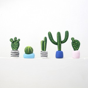 Mini Cacti Set C