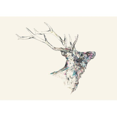 NEW MINERAL STAG_web