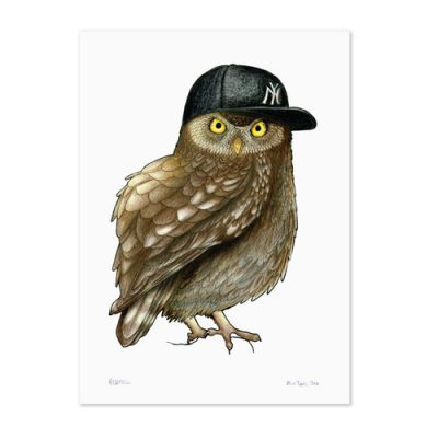 Owl in a Yankees Cap by Birds in Hats at The Red Door Gallery