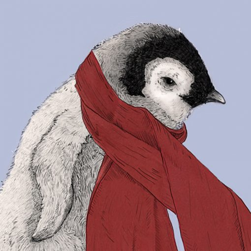Penguin, Emperor Penguin, Scarf, Cute, Kids, Baby Penguin, Illustration, Ben Rothery