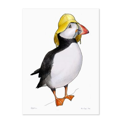 Puffin in a Sou'wester