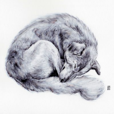 SLEEPY DOG A4 Print