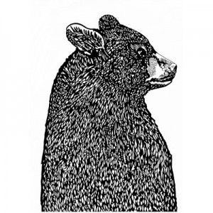 Small-Bear-in-Profile-screenprint-by-Susie-Wright-400x400