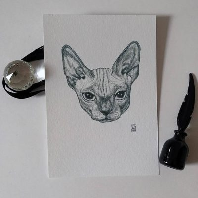 Sphynx Cat Animal Head Portrait 2 by sarah kwan artist