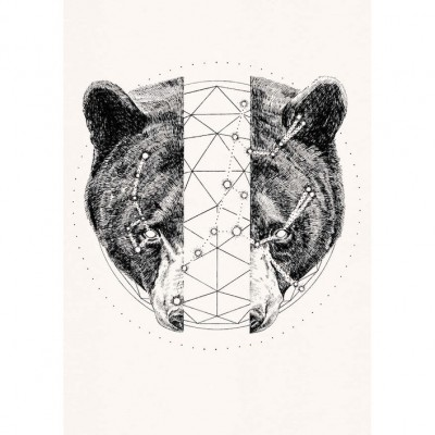 Ursus Major Ursus Minor by Peter Carrington