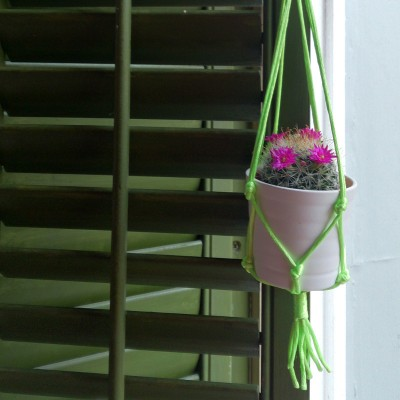lime macrame pot web