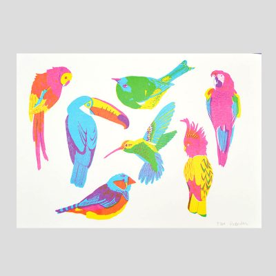 Birds of Paradise Risograph by East End Press