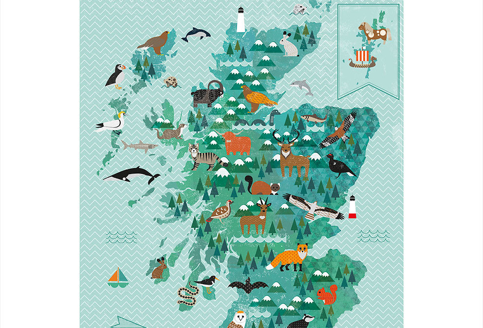 NMS Lates – Unveiling Kate Mclelland's Wildlife of Scotland Print