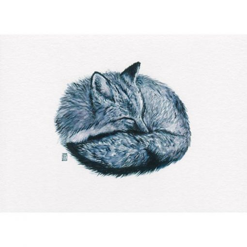 print of hand drawn sleeping fox in blue tinted monochrome