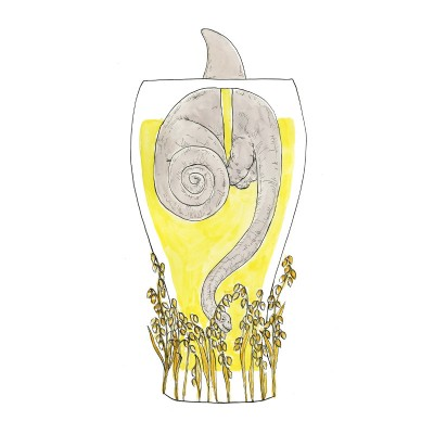 beer, wheat beer, hannah botma, dinosaur, beer glass, brewery