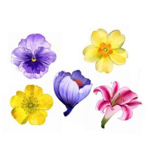 xiao flower brooches