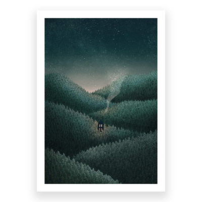 Dark Forest by David Fleck