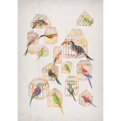 Architectural Aviary by David Fleck