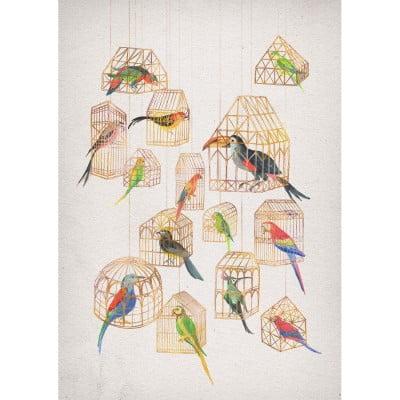 Architectural Aviary by David Fleck