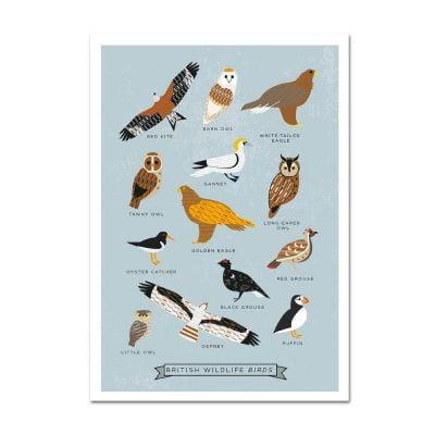Birds_postcard2