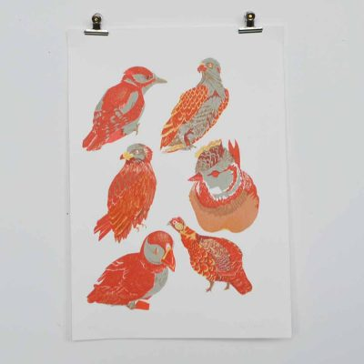 scottish birds,puffin,osprey, grouse, crested tit, woodpecker, scottish birds, screen print