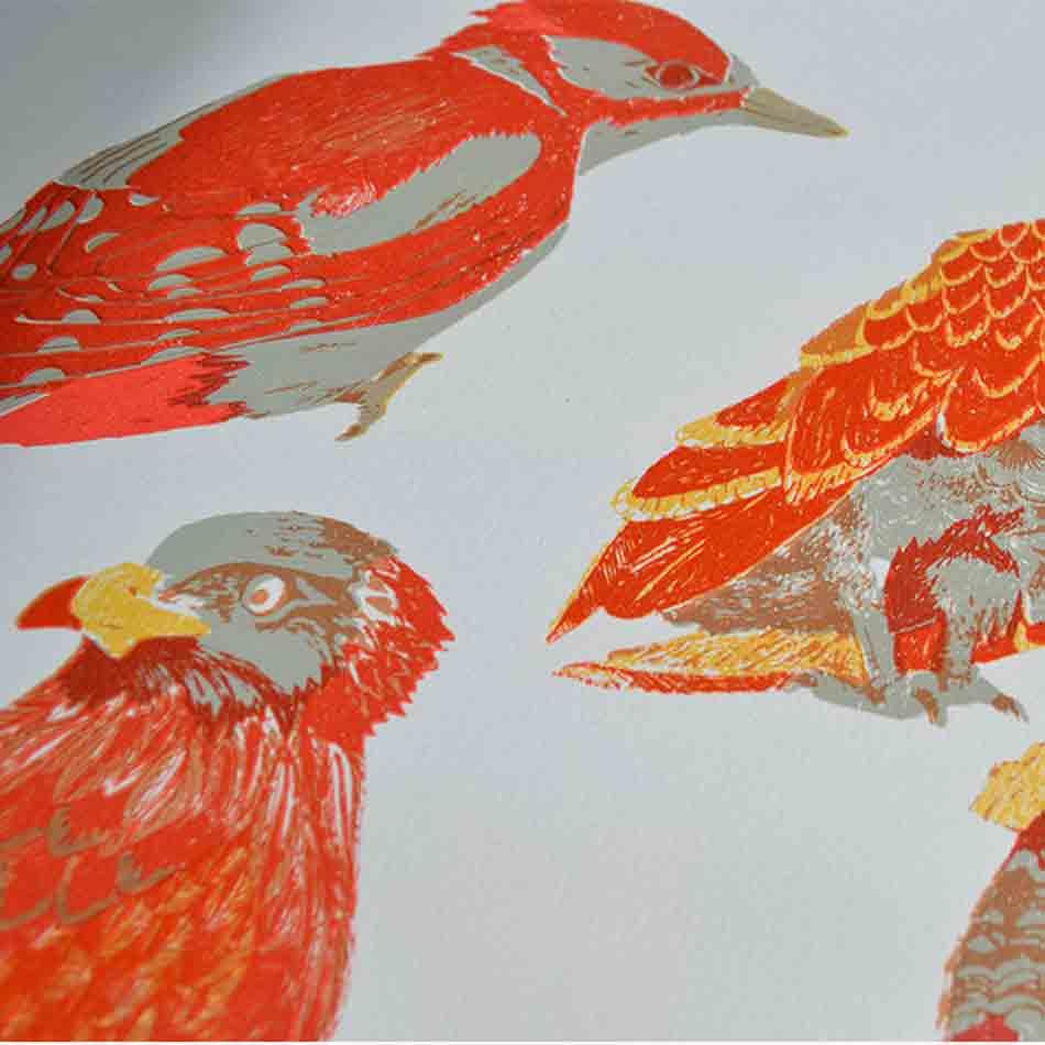 scottish birds,puffin,osprey, grouse, crested tit, woodpecker, scottish birds, screen print
