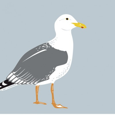 Gull Card Emily Hogarth