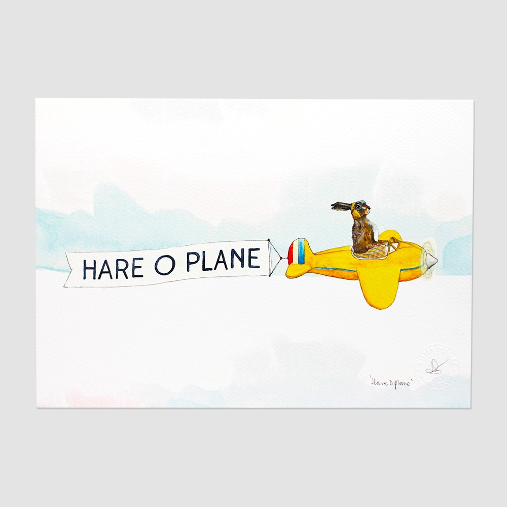 Hare O Plane A3 Print - Framed Prints (approx A3 Size), Art Prints, Giclée,  Gocco & Digital Prints, Humour, Fun and Puns, Kids - The Red Door Gallery