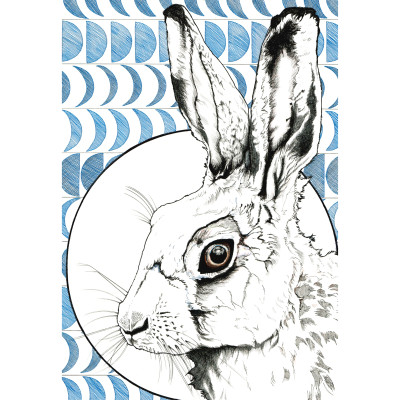 LB-hare and moon fabiano size