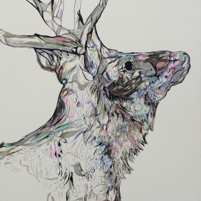 mineral-stag-2016-detail-1