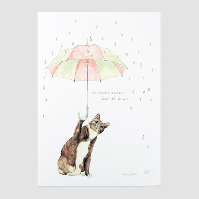 Never Rains but it Paws