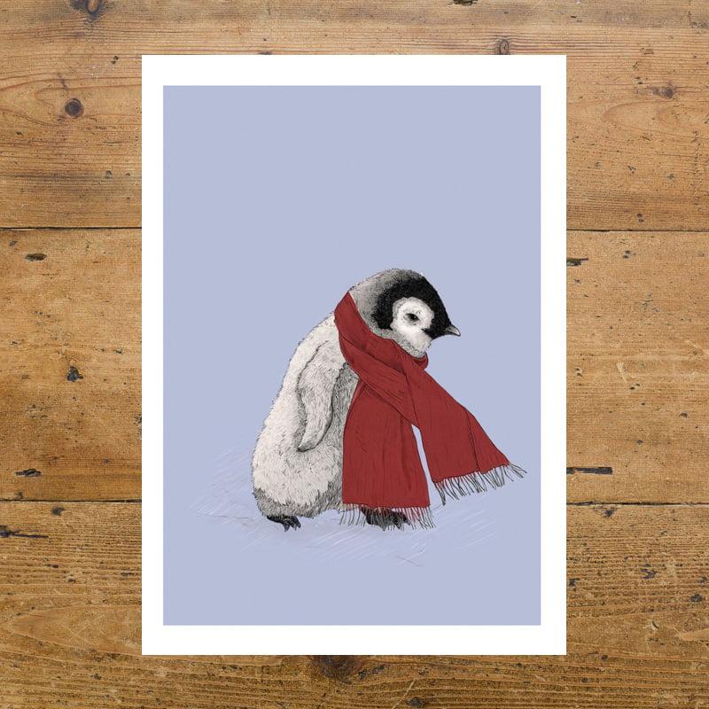 Penguin, Emperor Penguin, Scarf, Cute, Kids, Baby Penguin, Illustration, Ben Rothery