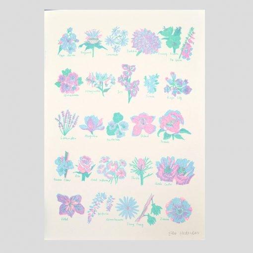 Flower Alphabet Risograph by East End Press