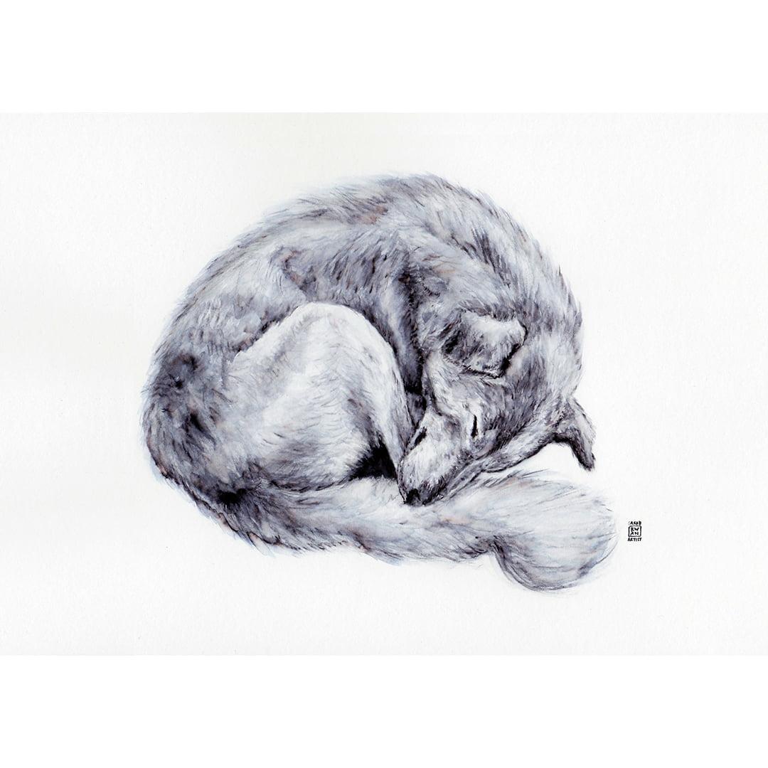 SLEEPY DOG A4 Print