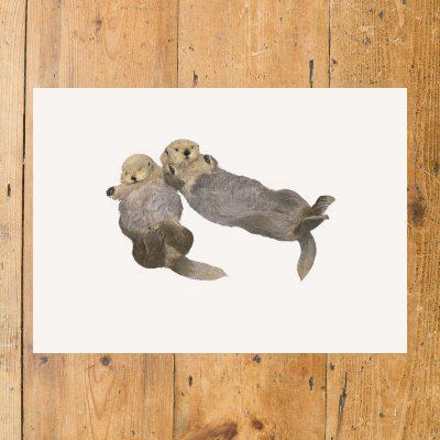 Sea-Otter-main