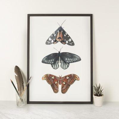 Wings A3 print