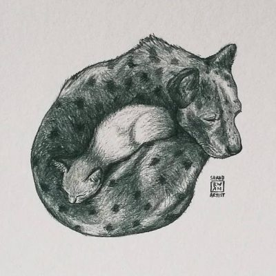 donut hugs cat and dog portrait by sarah kwan