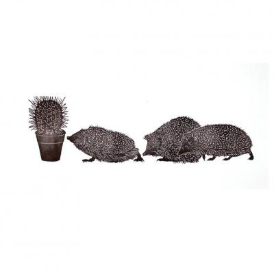 hedgehogs3