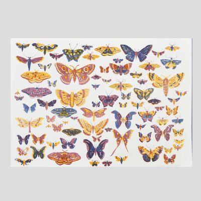 British Moth Risograph by East End Press
