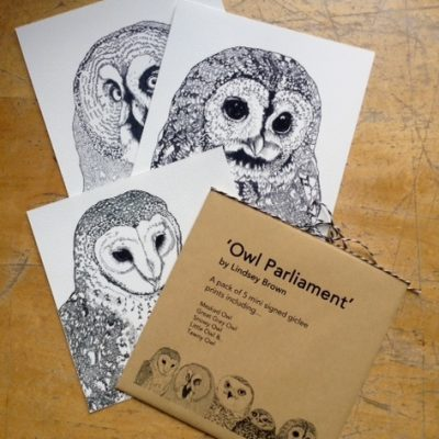 owl parliament pack