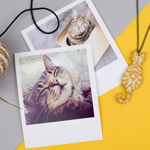 tabby cat, cats, cat brooch, love cats, wooden cat, cat badge, cat brooch, hello sunshine, pets, unique jewellery, cat necklace