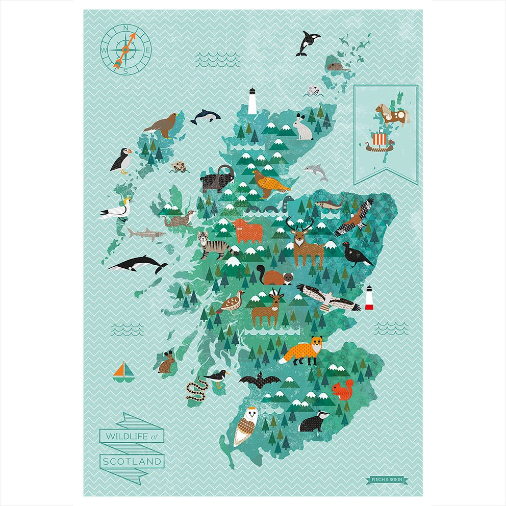 Kate Mclelland Wild Life Map of Scotland