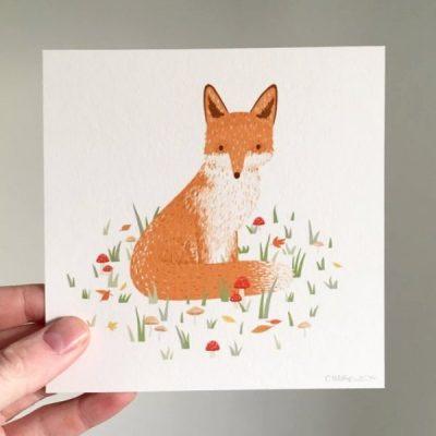 tom sit fox