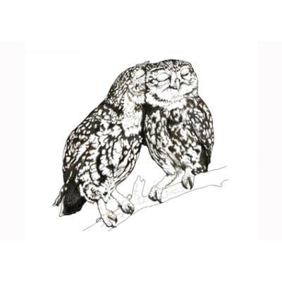 web- LB_liitle owl card